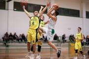 tarcento_serie_d_basket